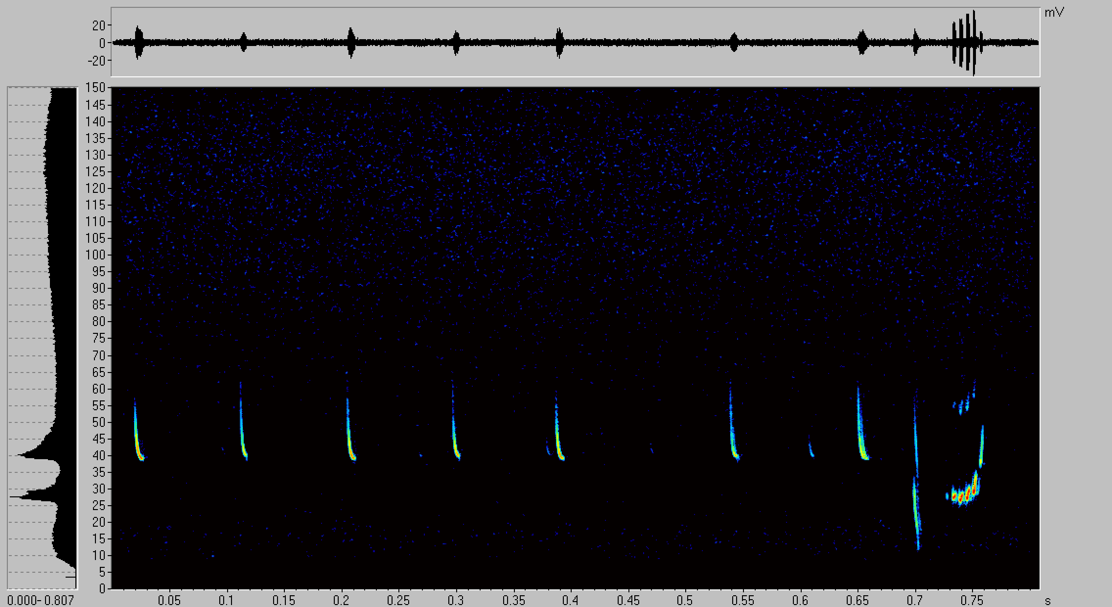 Fig. 7: Call sequence of a Pipistrellus nathusii